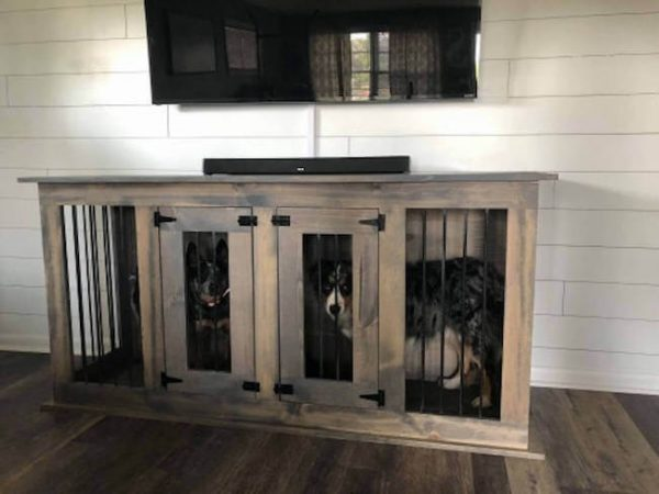 Weathered gray dog kennel with two doors and two dogs inside
